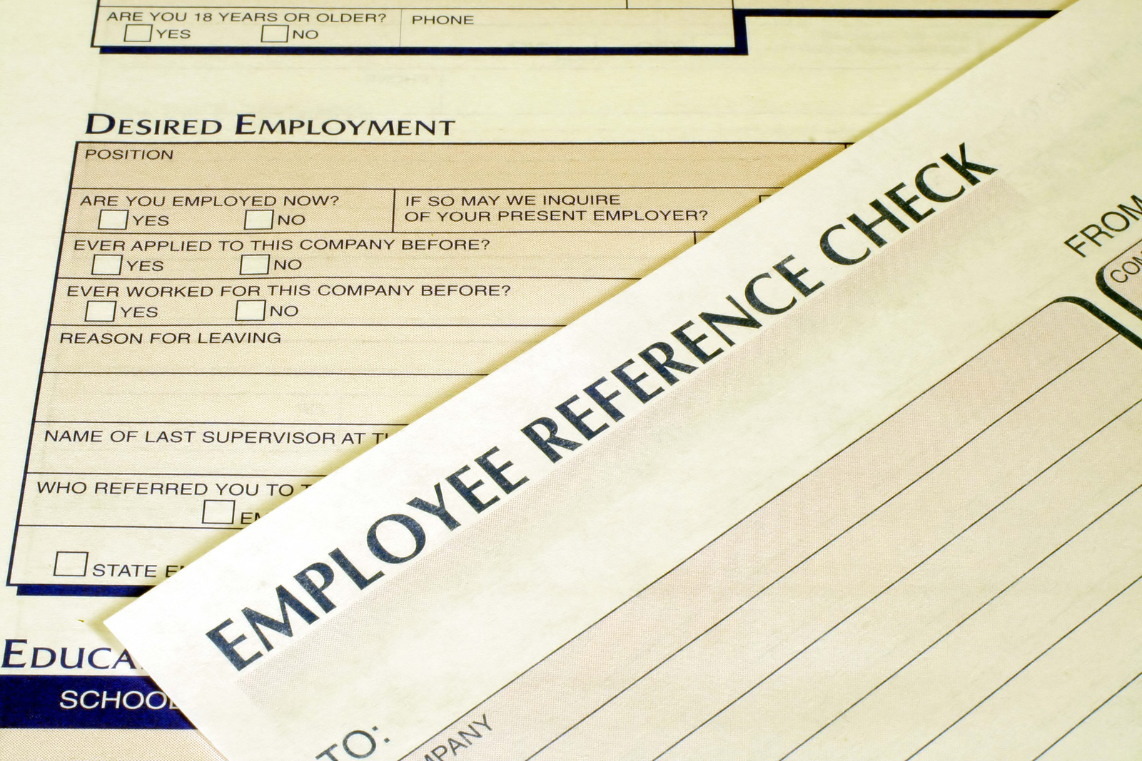 Writing A Job Reference Letter For An Employee